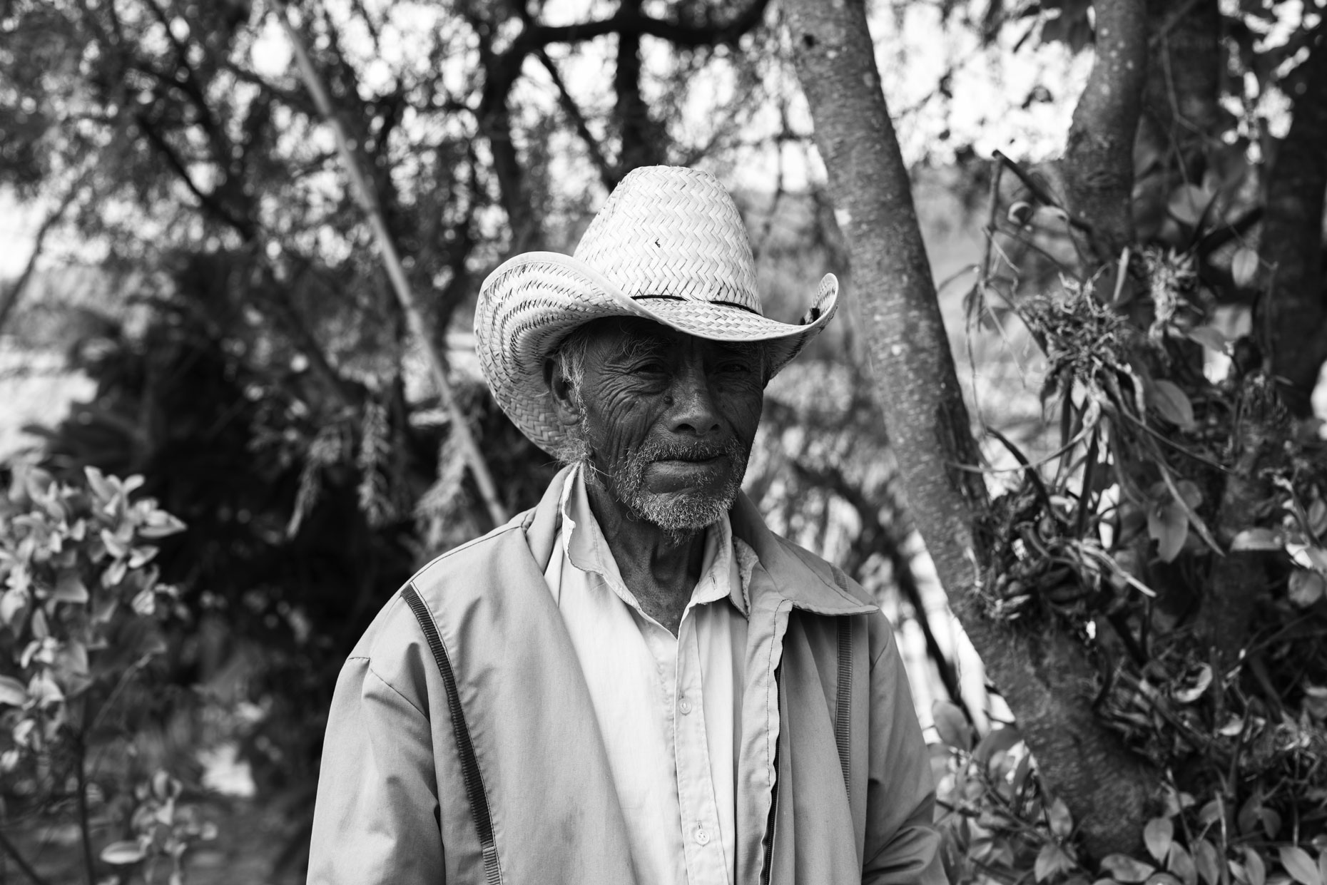 Mexican man in straw hat  in the mountains of Oaxaca